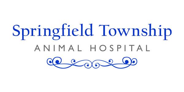 logo-springfield-township-ac