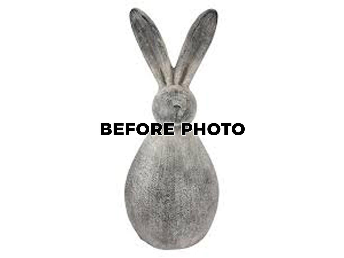 pp-2018-pissarro-rabbitrinth-royale-before